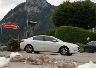 Peugeot 508 2.0D (163 hp) AT Active